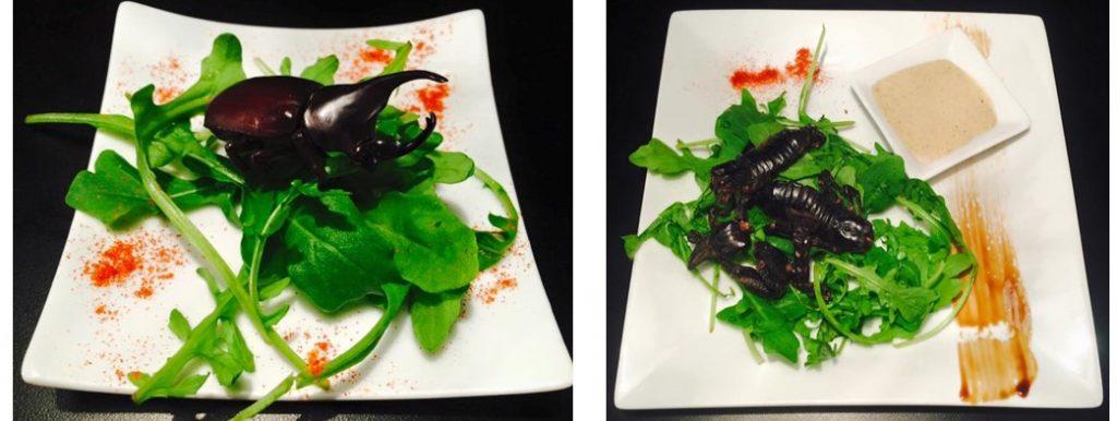 Restaurant insectes marseille