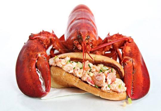 lobster-jeje-le-barbu-chez-meme